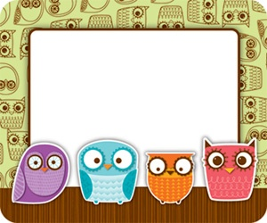 1000+ ideas about Owl Name Tags on Pinterest.