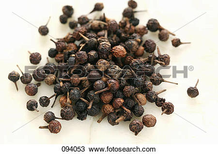 Stock Photo of Cubebe tail pepper 094053.