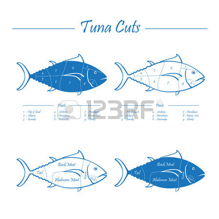 7,137 Tail Fin Stock Vector Illustration And Royalty Free Tail Fin.