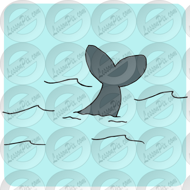 Tailfin Picture for Classroom / Therapy Use.