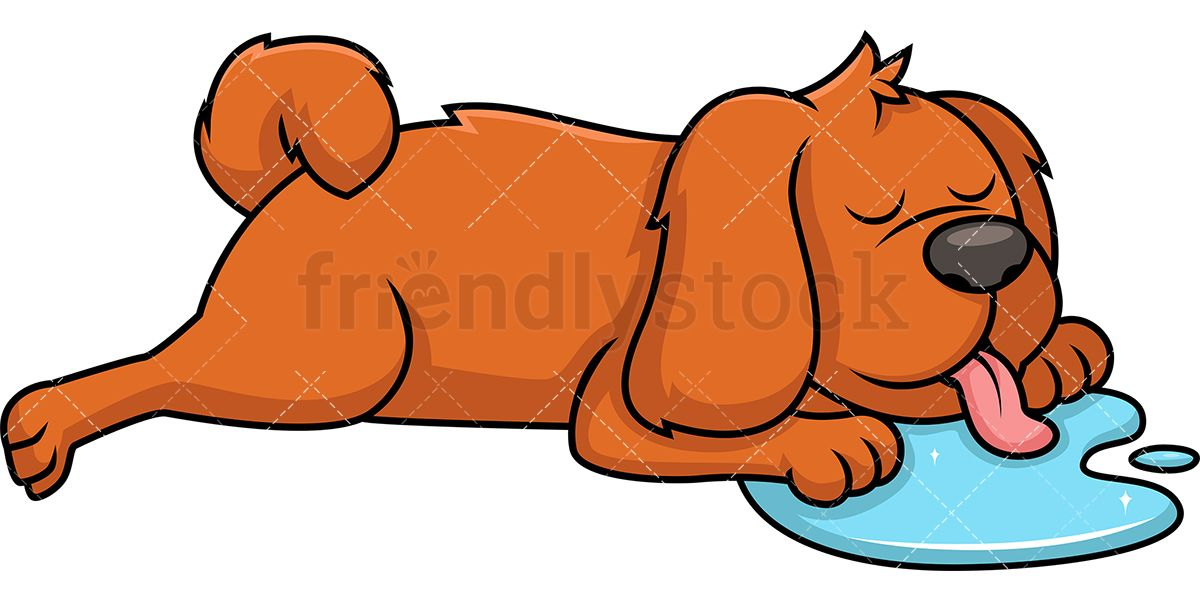 Dog Sleeping And Drooling.