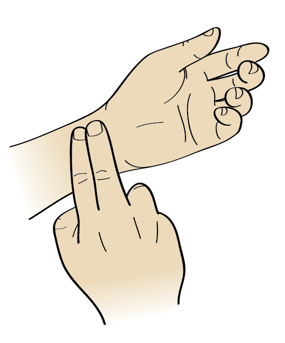 Pulse rate clipart.