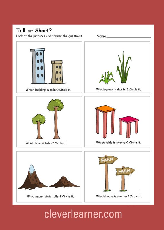 Great Tall vs Short activity worksheets for children.