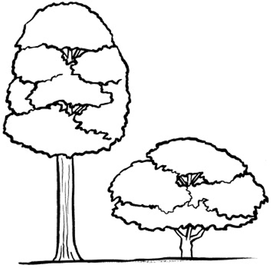 Tall And Short Clipart Black And White.