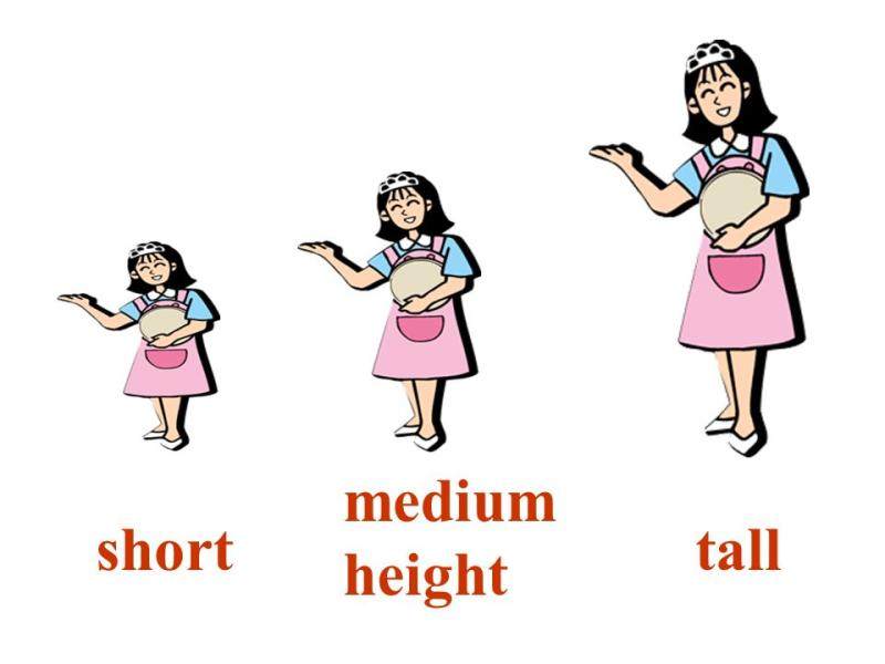 Tall clipart short medium, Tall short medium Transparent.