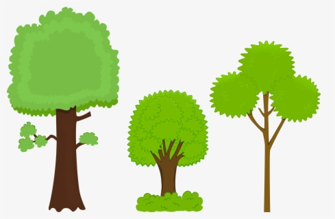 Free Tree Png Clip Art with No Background.