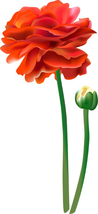 Tall Red Flower Clipart.