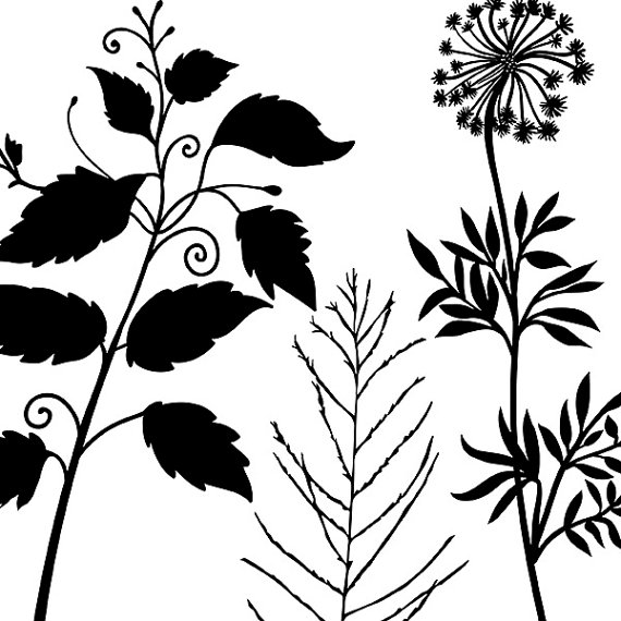Tall Foliage Clip Art, Long Stem Flowers & Leaf Silhouettes.