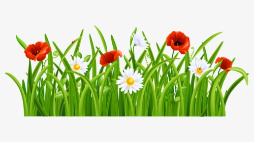 Grass Flower PNG Images, Free Transparent Grass Flower.