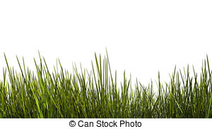 Tall grass Stock Illustrations. 1,584 Tall grass clip art images.