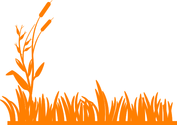 Orange Grass Clip Art at Clker.com.