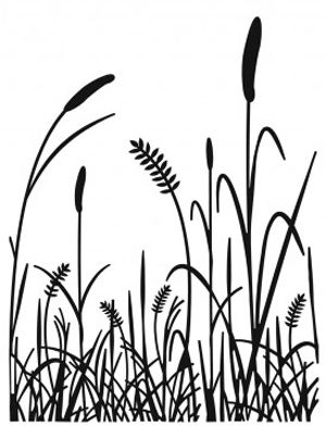22 best images about Tall Grasses on Pinterest.