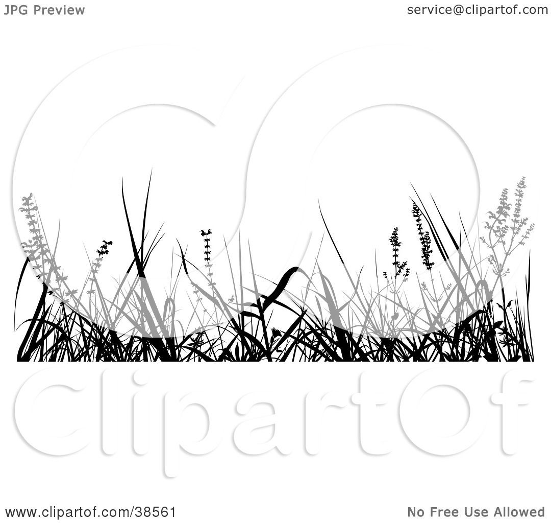 Clipart Illustration of Tall Weeds Silhouetted in Black by dero #38561.