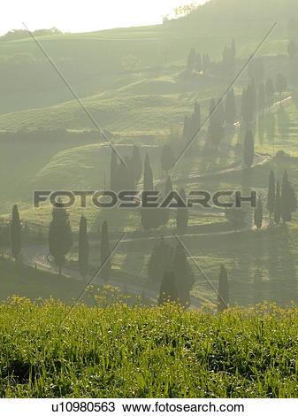 Stock Photo of Tuscany, Italy, Monticchiello, Toscana, Europe.