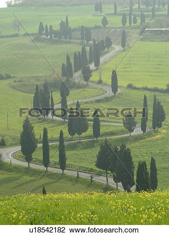 Stock Photo of road, Italy, Tuscany, Monticchiello, Toscana.