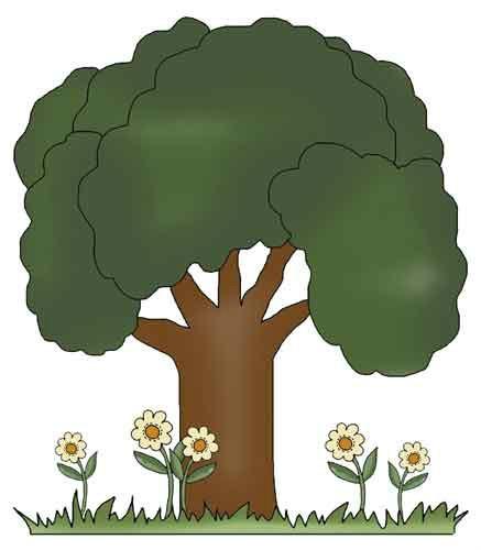 Tall Tree Clip Art For Kids.