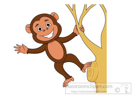 Search results search results for tamarin monkey pictures clip art.
