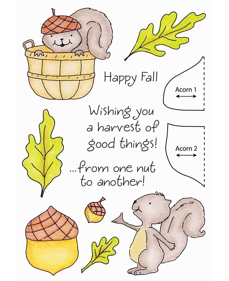 Squirrel Clear Stamp Set 11117MC.