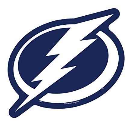 Wincraft NHL Tampa Bay Lightning Logo on the GoGo: Amazon.co.