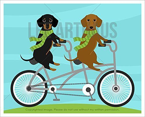 1000+ ideas about Tandem Bicycle on Pinterest.
