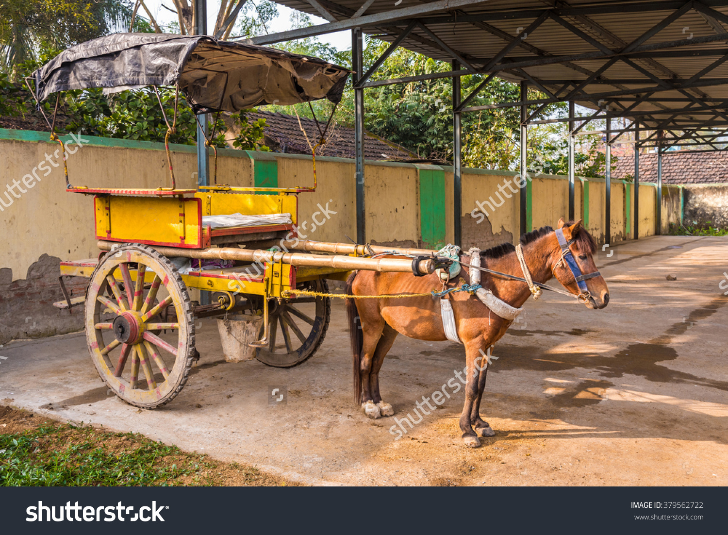 Traditional Horse Cart Known Tanga Murshidabad Stock Photo.