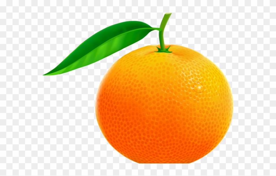 Tangerine Clipart Jeruk.