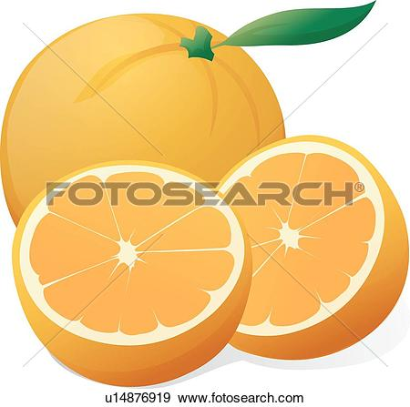 Tangerine Clip Art Illustrations. 1,260 tangerine clipart EPS.