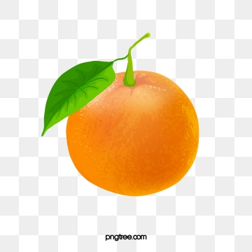 Tangerine PNG Images.