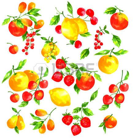 522 Mandarin Tree Stock Vector Illustration And Royalty Free.