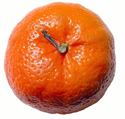 Tangerine clipart free.