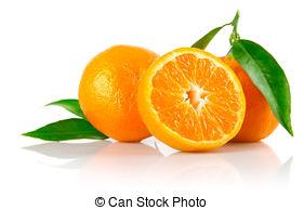 Tangerine Stock Photo Images. 37,085 Tangerine royalty free.
