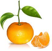 Tangerine Clip Art.