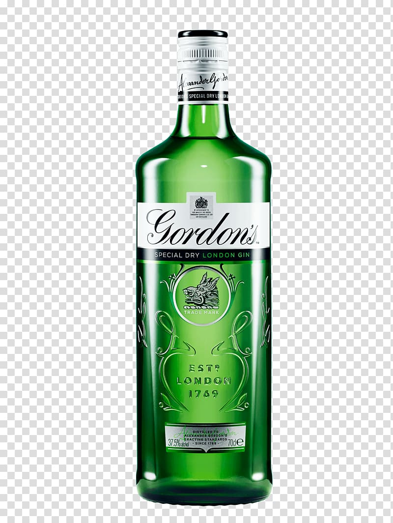 Gin and tonic Tanqueray Distilled beverage Hendrick\\\'s Gin.