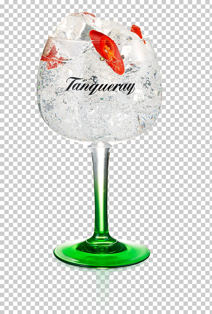 Gin and tonic Wine glass Cocktail garnish Tanqueray Tonic.