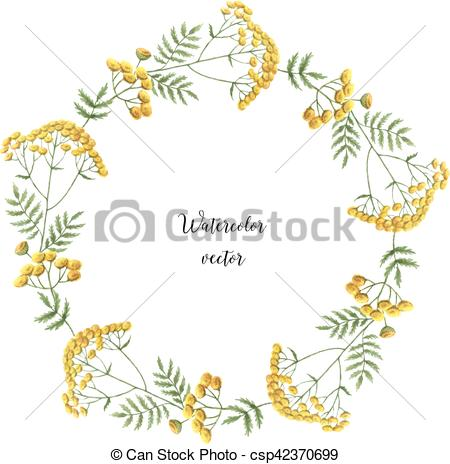 EPS Vectors of Watercolor vector round frame of tansy.