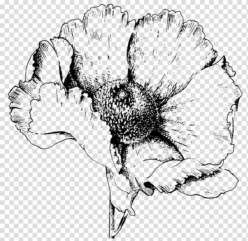 CALYX Literature Petal Poetry Sepal, taro flower transparent.