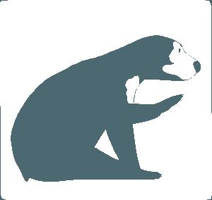 Sun Bear.