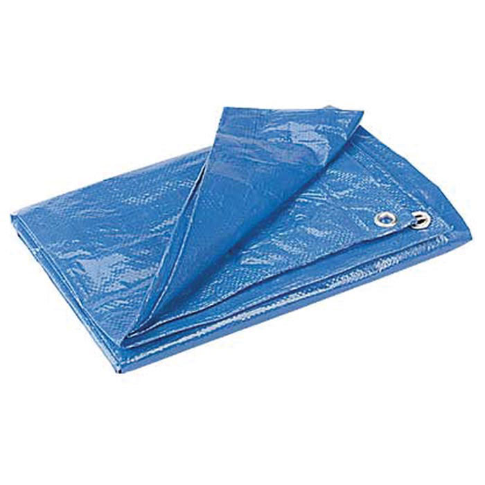 EQUINOX Poly Tarp, 6 x 8 ft. Free Shipping at $49.