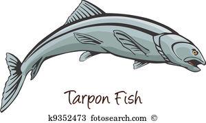 Tarpon Clipart Vector Graphics. 18 tarpon EPS clip art vector and.