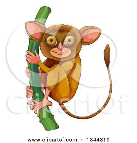 Clipart Tarsier On Bamboo.