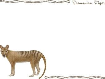 Tasmanian Tiger, Tasmanian Wolf, Thylacine clipart graphics (Free.