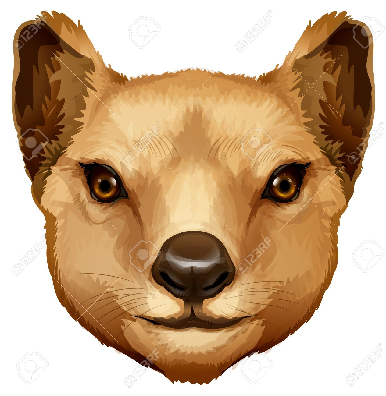 Illustration Of A Tasmanian Tiger Head Royalty Free Cliparts.