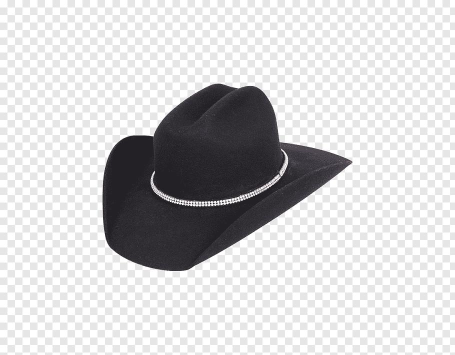 Cowboy hat Stetson Beaver hat Resistol, Hat free png.