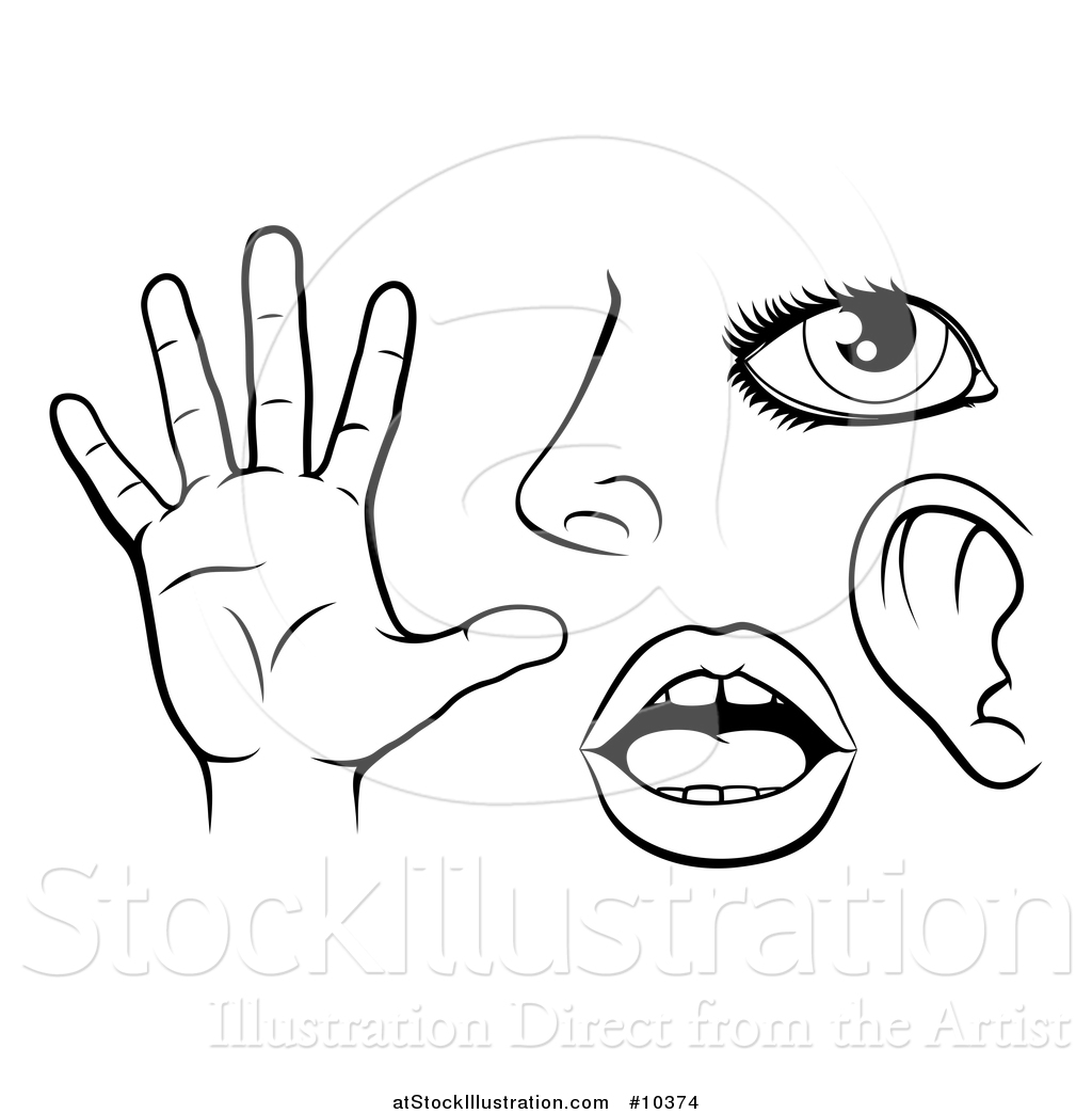 Vector Illustration of Black and White Icons of the Five Senses.