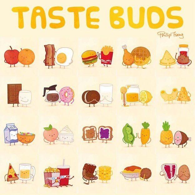 25+ best ideas about Taste Buds on Pinterest.