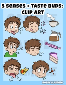 5 Senses + 5 Tastebuds Clip Art Set (plus extras!).