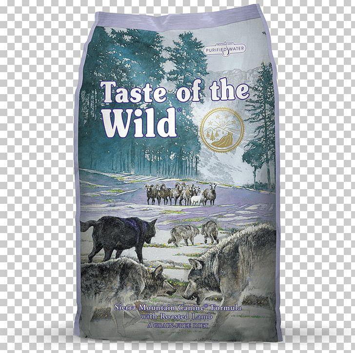 Dog Food Taste Formula PNG, Clipart, Animals, Breed.