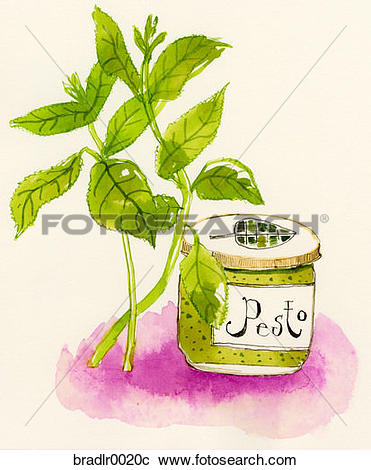 Stock Photography of pesto, homemade, cooking, fresh, tasty, basil.