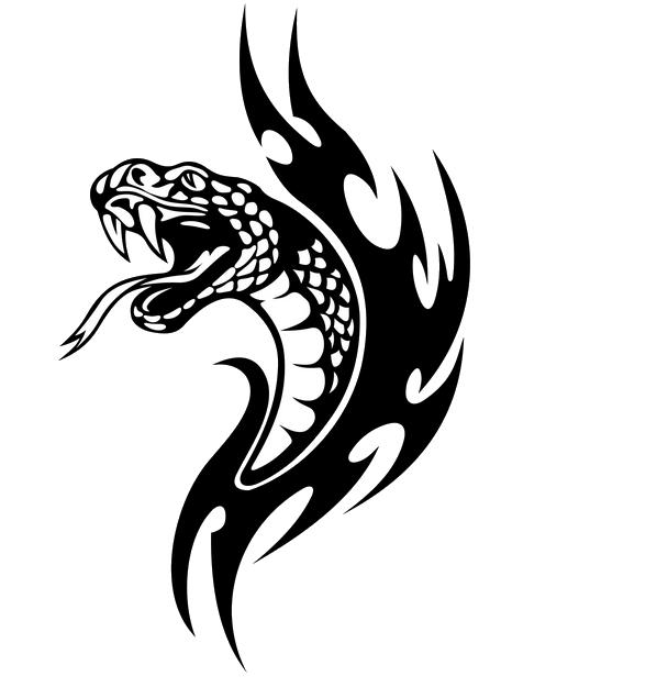 Snake Tattoo PNG Transparent Images.