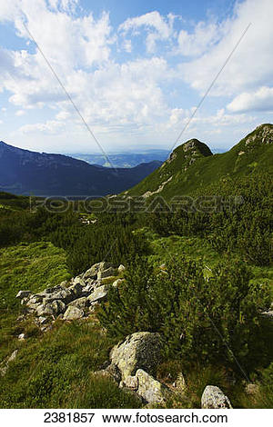 Picture of Hiking trail on Gubalowka mountain in Tatra mountains.